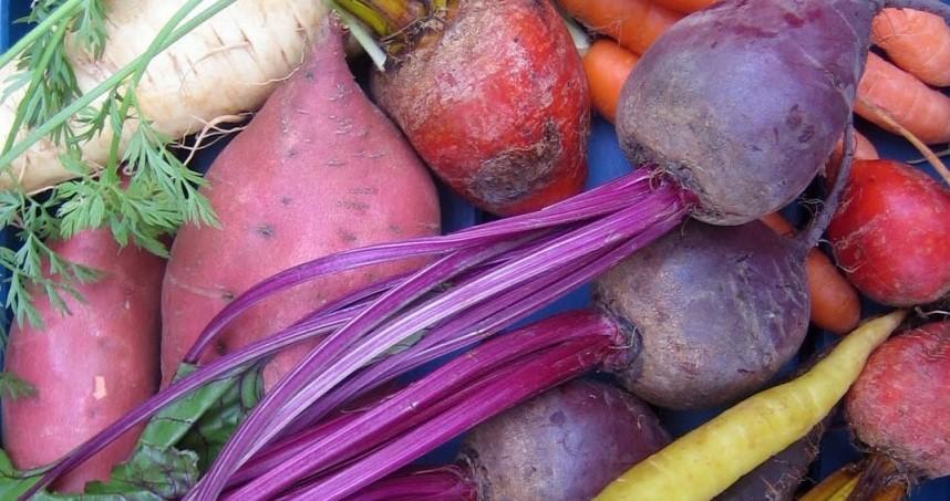 Происхождение корнеплодных овощей.